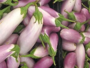 aubergines violettes